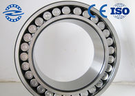 China Double row  Full complement cylinder roller  bearing SL045004PP factory